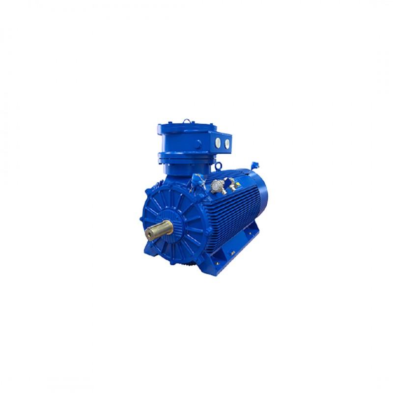 Exproof Motor 55kW 3000d/dk B3 II2G EExdIIB T4-IP55